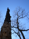 Duncan Ridge Trail Nov 2009: Spooky by sbank03 in Other Trails