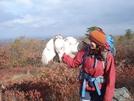 At Trip Va.w. Va. Nov. 2010 477 by Namaste in Birds