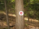 Mystery Symbol by Red Rover in Views in Connecticut