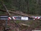 Duncan Ridge Trail - Wolf Pen Gap