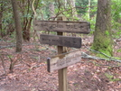 Duncan Ridge Trail by Dances with Mice in Other Trails