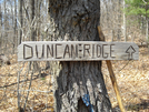 Drt & Benton Mackaye Intersection by Dances with Mice in Other Trails