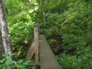 Bridge by buckowens in Section Hikers