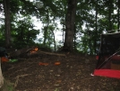 Campsite on Rocky Cove Knob 4,400 feet