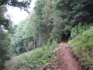 Trail out of Rock Gap 2 by buckowens in Section Hikers