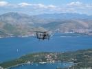 Hawk over the Adriatic Sea