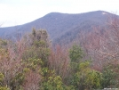 Colonel Chaco in the Smokies by Chaco Taco in Trail & Blazes in North Carolina & Tennessee