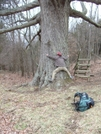 Hikerhead And Keffer Oak by J5man in Special Points of Interest