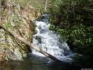 Mau Har Trail by Walk On Boy in Trail & Blazes in Virginia & West Virginia