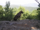 The pUp by RiverWarriorPJ in Section Hikers