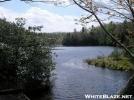 ~BearTreeLake~ (MtRogers) by RiverWarriorPJ in Views in Virginia & West Virginia