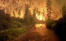 Fowarded to me by RiverWarriorPJ in Deer