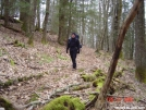 2005 AT hike w/ hoppy and frenchie by nitewalker in Views in North Carolina & Tennessee