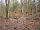 Proposed New England Trail[north South Tr Ri] by nitewalker in Other Trails