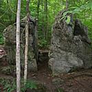 AT / LT by 4eyedbuzzard in Trail & Blazes in Vermont