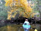 Fall Paddle On Juniper Run by BumpJumper in Other People