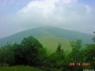 Bradley Gap on Roan Mountain by kby in Day Hikers