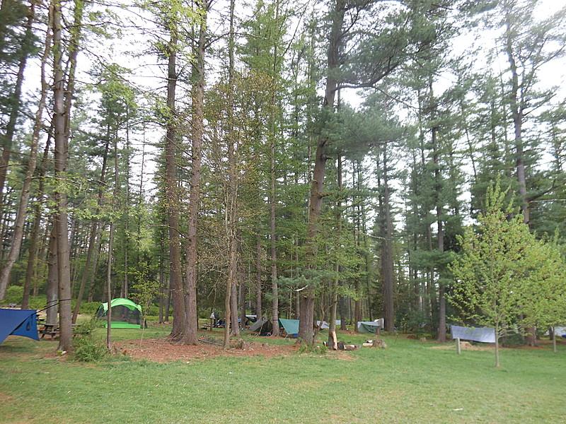 Pine Grove 2012 MAHHA