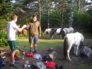 Pony Invasion by Sir Evan in Trail & Blazes in Virginia & West Virginia
