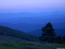Grayson Highlands South West Virginia by doggiebag in Views in Virginia & West Virginia