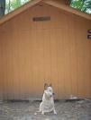 8-2-07 Darlington Shelter in PA