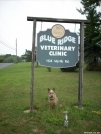 Thank you Blue Ridge Veterinary Clinic by doggiebag in Maryland & Pennsylvania Trail Towns