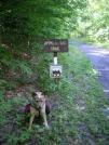 6-5-07 Creeper Trail - North of Damascus, VA