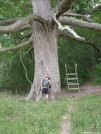 """""""Dirt"""" In front of the Keiffer Oak - Central Virginia by doggiebag in Thru - Hikers"""