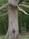 Keiffer Oak (sp?) by doggiebag in Thru - Hikers