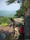 "Team Doggiebag's ""Aldo"" on Dragons Tooth by doggiebag in Views in Virginia & West Virginia"