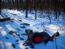 1-20-08 Enroute To The Bears Den Hostel - Va by doggiebag in Trail & Blazes in Virginia & West Virginia