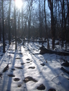 1/20/08 - Sun, Scow And Rocks Of The Rollercoaster. by doggiebag in Views in Virginia & West Virginia