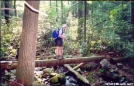 Footbridge over Johnson Branch, NC by The Weasel in Trail & Blazes in North Carolina & Tennessee