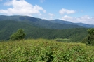 Roan Highlands NC/TN by GrouchoMark in Trail & Blazes in North Carolina & Tennessee