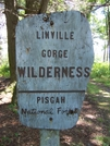 Linville Gorge, N.C. by GrouchoMark in Other