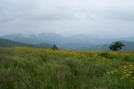 Roan Highlands, NC/TN