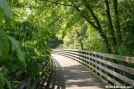 Bridge on the Virginia Creeper Trail