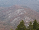 Views from Mt. Sterling Fire Tower by mts4602 in Views in North Carolina & Tennessee