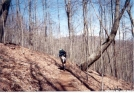 Lonely Trail by Saluki Dave in Trail & Blazes in North Carolina & Tennessee