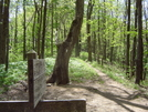 Lakeshore Trail by tripp in Views in North Carolina & Tennessee