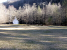 Elk In The Cataloochee Valley by tripp in Other