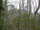Sipsey Wilderness, Al by MyName1sMud in Section Hikers