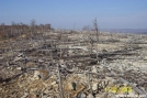 Palmerton Devastation by c.coyle in Trail & Blazes in Maryland & Pennsylvania