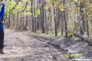 Tire Tracks on AT Near Bake Oven Rd. by c.coyle in Trail & Blazes in Maryland & Pennsylvania