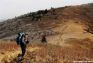 Repeat approaching Rex Peak by tarheel in Section Hikers