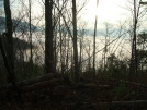 A view from Round Mountain below Lemon Gap by Tennessee Viking in Views in North Carolina & Tennessee