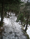 Ice Trail In The Woods On Round Bald by Tennessee Viking in Views in North Carolina & Tennessee