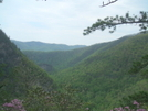 Laurel Fork Gorge From Potato Top