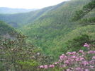 Laurel Fork Gorge From Potato Top by Tennessee Viking in Views in North Carolina & Tennessee