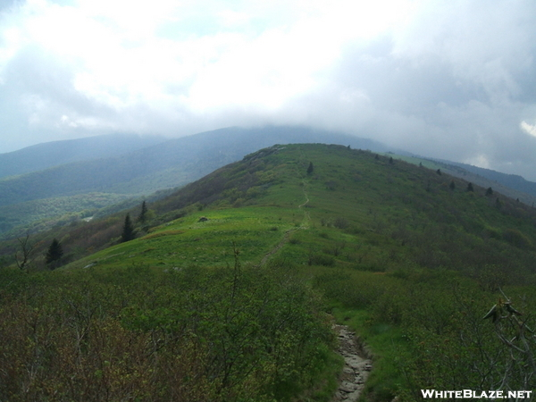 Roan Highlands In The Mist